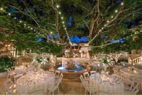 Outdoor Venues for Weddings